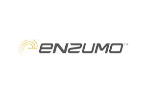 enzumo300x200